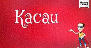 Image result for kacau