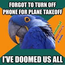 Flying is dangerous   Animal Memes via Relatably.com