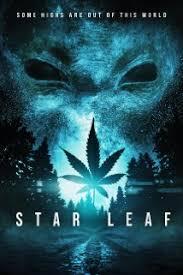 Star Leaf Online