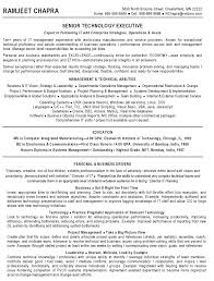 it manager cv sample managerial resume team leader career photos sample project project it manager resume example