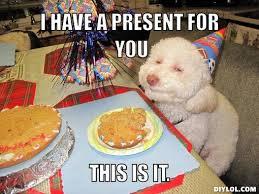 Birthday Dog Meme Generator - DIY LOL via Relatably.com