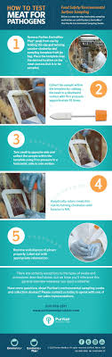 learn proper food safety testing methods food safety testing infographic