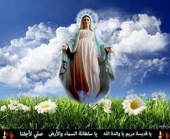 2 - نشرة اخبار صوم ام النور  17/8/2012 Images?q=tbn:ANd9GcQEGNzb_IML_eR1jz37cRwQ92OrRVm8M-UelEWHyeKVYH0r7EBU_g