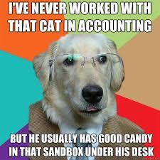 Business Dog memes | quickmeme via Relatably.com