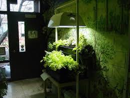 Kitchen Herb Garden Design 27 Indoor Kitchen Herb Garden For Better Interior Designs Vybbizcom