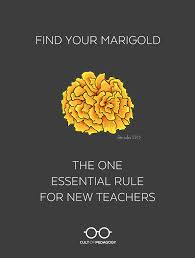 find your marigold the one essential rule for new teachers cult welcome to your first year of teaching this year will test you more intensely than just about anything you ve done up to now