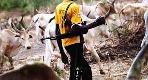 Image result for Herdsmen clash with Farmers in Bende, Abia State