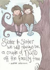 Quotes About Two Sisters. QuotesGram via Relatably.com