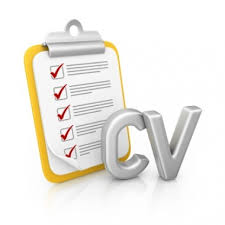 Professional Curriculum Vitae format for Development Sector