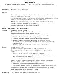 chronological resume example  project managerchronological resume example project manager