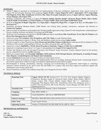 informatica consultant resume   example resume hostessinformatica consultant resume sample resume for obiee consultant sample cognos resumes