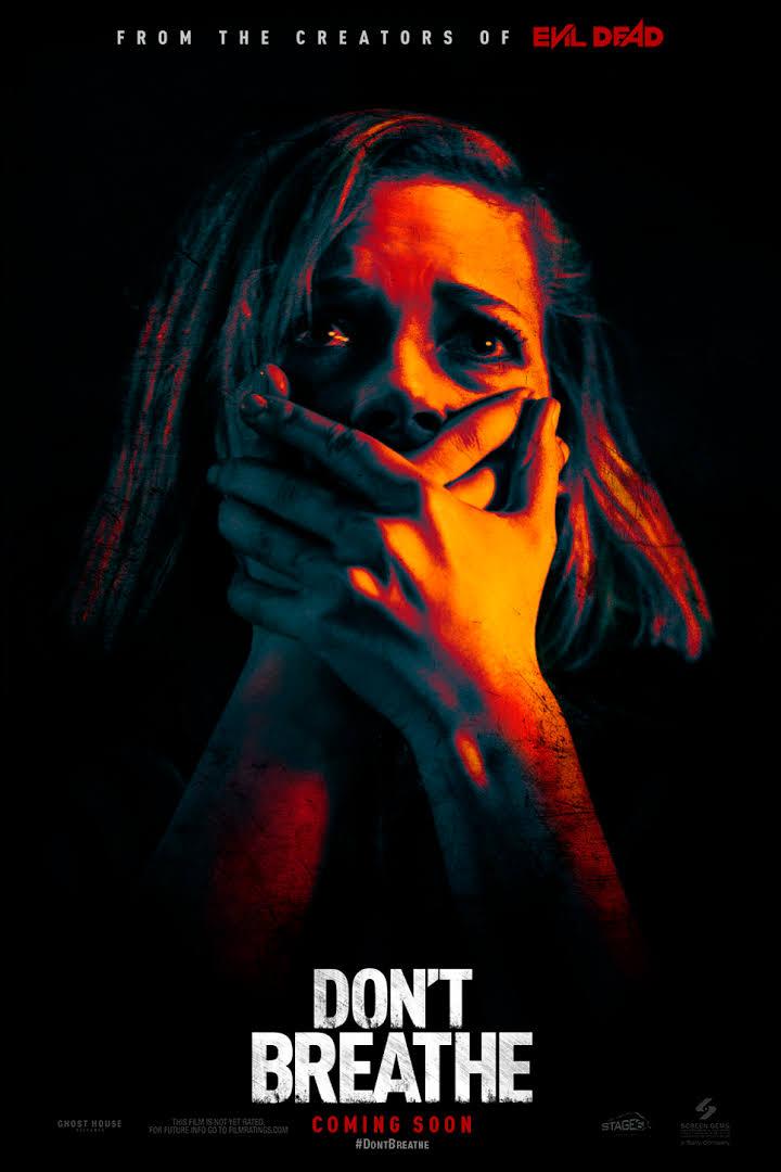Download Don't Breathe (2016) Dual Audio {Hindi-English} 480p 720p
