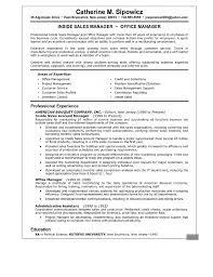 resume summary examples   seangarrette coresume summary