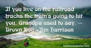 Railroad Tracks Quotes: best 10 quotes about Railroad Tracks via Relatably.com