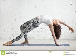 dancer girl doing backbend gymnastics posture stock photos images young attractive w in camatkarasana pose white studio backg stock photos