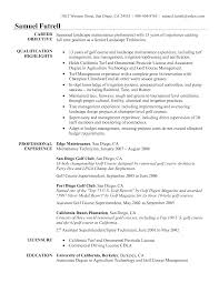 professional services director resume s director lewesmr sample resume resume sles for managers management director