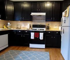 gel stain kitchen cabinets: image of modern gel stain for kitchen cabinets