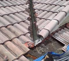 roof repair place: an expert will first review the home to evaluate the repair needs wwwfloridaroofleak