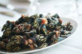 Image result for percebes