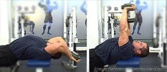تمرين الصدر كمال اجسام اوفر