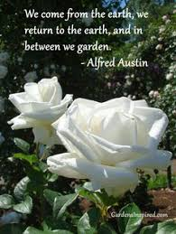 Image result for free garden quote