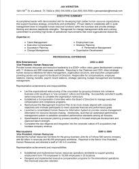 hr executive   free resume samples   blue sky resumesold version
