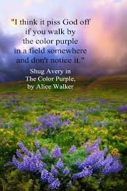 best images about poet alice walker the the color purple by alice walker