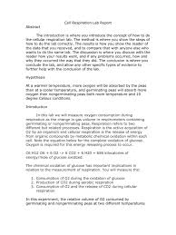 photosynthesis essay photosynthesis essay questions