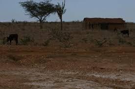 Image result for Mapeamento indicará áreas vulneráveis a secas no Semiárido