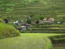 photo essay  batad rice terraces in the philippinesbatad rice terraces