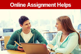 Help With Assignment   Do My Assignment Millicent Rogers Museum