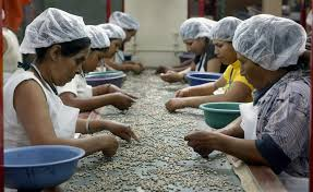 Image result for Training, Employment and Rural Development