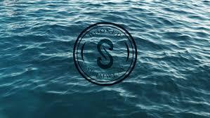 Art Director SoleiHooked <b>Swim - Art</b> Director Solei