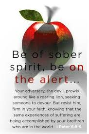 Image result for images for 1 Peter 5:8