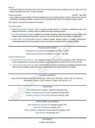 External Auditor Resume  auditor resume  staff auditor resume