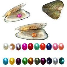10PC Freshwater Cultured Pearl Oyster with 7-8mm ... - Amazon.com