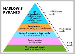 best ideas about maslow motivation psychology 17 best ideas about maslow motivation psychology social work and therapy