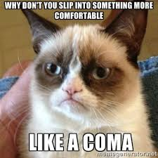 Grumpy Cat | Meme Generator via Relatably.com