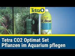 аквариумный интернет-магазин - Tetra CO2 ... - Akvionika.ru