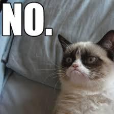 MISERABLE CAT MEMES image memes at relatably.com via Relatably.com