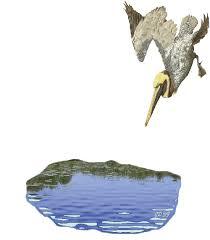 """Résultat de recherche d'images pour """"gifs de heron"""""""