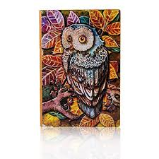 Fronnor Vintage Hardcover Owl Theme Cool Fashion ... - Amazon.com