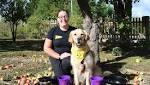 Howl-o-ween half term fun at Dogs Trust Evesham