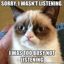 Sorry, I wasn't listening. I was too busy not listening - Grumpy ... via Relatably.com
