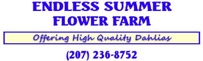 Endless <b>Summer Flower</b> Farm - HOME