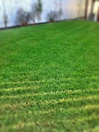 mowing business how to start a lawn care business lawn mowing business how to start a lawn care business