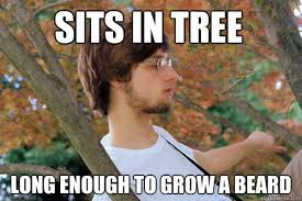 Sits in tree Long enough to grow a beard - Awkward Andy - quickmeme via Relatably.com