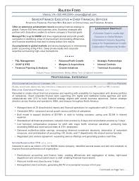 the top  executive resume examples written by a professional    chief financial officer resume sample – senior finance executive