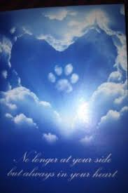 PETS NO LONGER WITH US on Pinterest | The Rainbow Bridge, Rainbow ...