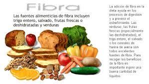 Resultado de imagen para funcion, deficiencia, toxicidad, fuentes naturales de la fibra digestiva